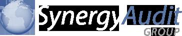 Synergy Audit Group logo